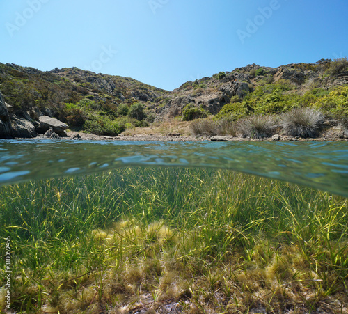 Mediterranean shore in a small secluded cove with sea grass Cymodocea nodosa underwater, split view over and under water surface, Spain, Costa Brava, Catalonia, Cap de Creus, Cala Bona #318059455