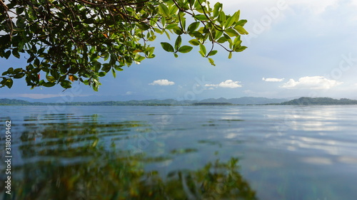 Peaceful tropical seascape seen from water surface, Bocas del Toro, Caribbean side of Panama, Central America #318059462