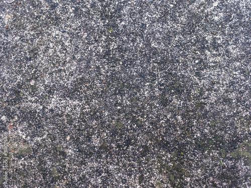 Damp Concrete Pavement Gray Background Texture with fine aggregate Canvas Print