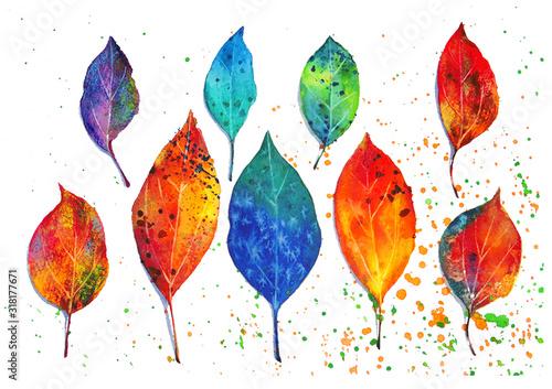 Fotografie, Obraz 水彩の技法を使って葉っぱを描いた水彩イラスト