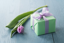Purple Tulip With Gift Box On ...