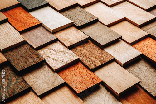 Fototapeta Set of exotic valuable wood for the catalog, texture and structure of the materi