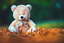 Teddy Bear Baby Toy Sitting In...
