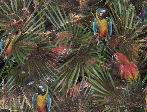 z-kolorowymi-papugami-w-dzungli-utrzymana-w-stylu-retro