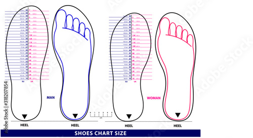 Valokuva set of shoes chart size or socks chart size or measurement foot chart concept