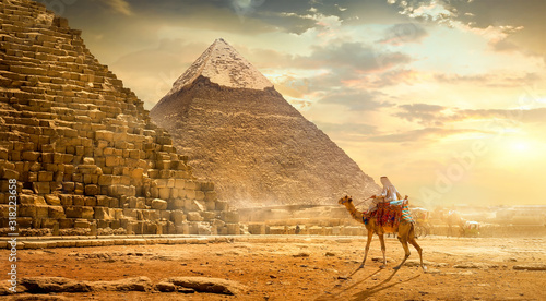 Photo Camel near pyramids