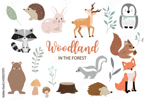 Photo Cute woodland object collection with bear,rabbit,fox,skunk,mushroom and leaves
