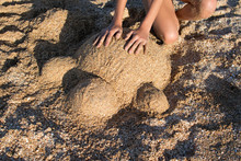 Sand Turtle Sculpture Top View...