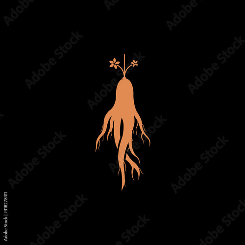 Photo red ginseng root vector logo design isolated on black background