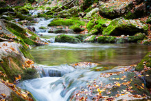 Stream Of Cold Mountain River ...