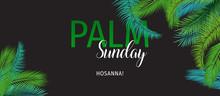 Palm Sunday (HOSSANA!) Holiday...