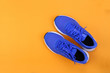 canvas print picture - Top view blue running shoes on orange pastel background