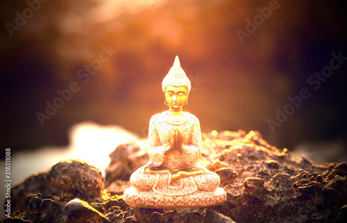 The figure of a Buddha in a position to meditate Canvas Print