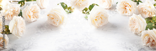 Beautiful white  roses flowers . Canvas Print