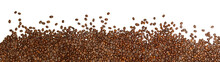 Coffee Beans On A White Backgr...