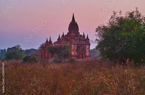 The shrine in tall grasses, Bagan, Myanmar Wallpaper Mural
