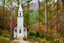 Chapel In Forest