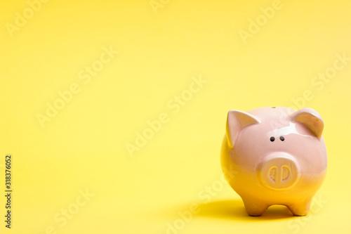 Fototapeta Piggy bank and golden coin. Savings and finance concept obraz