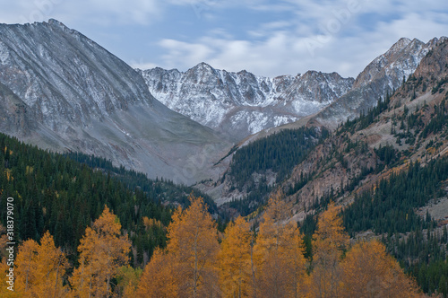 Autumn landscape at dawn of the Elk Mountains with aspens and conifers, Castle Creek Road, Colorado, USA