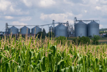 Agricultural Silos. Storage An...