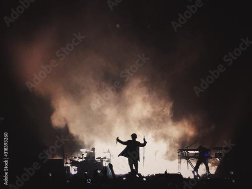 People Enjoying Music Concert At Night - fototapety na wymiar