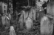 Historic Jewish Cemetery Pragu...