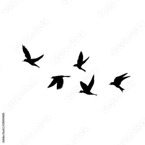 Fototapeta Silhouette of flying birds on white background. Inspirational body flash tattoo ink. Vector. obraz
