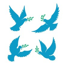 Flying Pigeon With Olive Branch