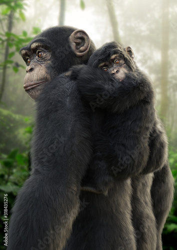 Chimpanzee mother carrying her young baby on her back with a forest background Fotobehang