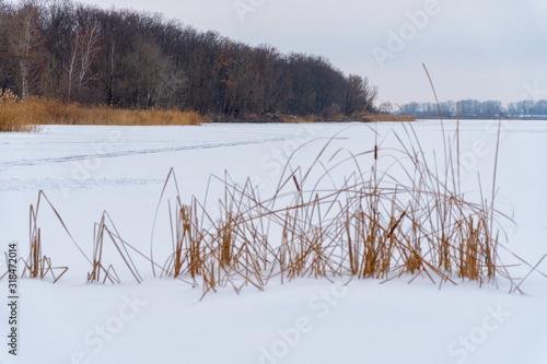 Vászonkép Winter landscape