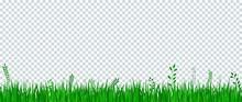 Green Grass Border On Transpar...