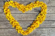 Heart Made Of Yellow Rudbeckia...