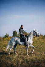Knight On Horseback. Armored G...
