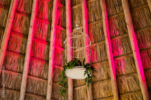 Fotografie, Tablou Low Angle View Of Leaves In Birdcage Hanging On Thatched Roof