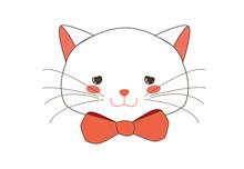 Cute White Kitten Begging Face...