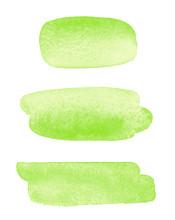 Grass Green Watercolor Brush S...