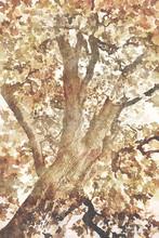 Digital Art Painting Canvas - ...