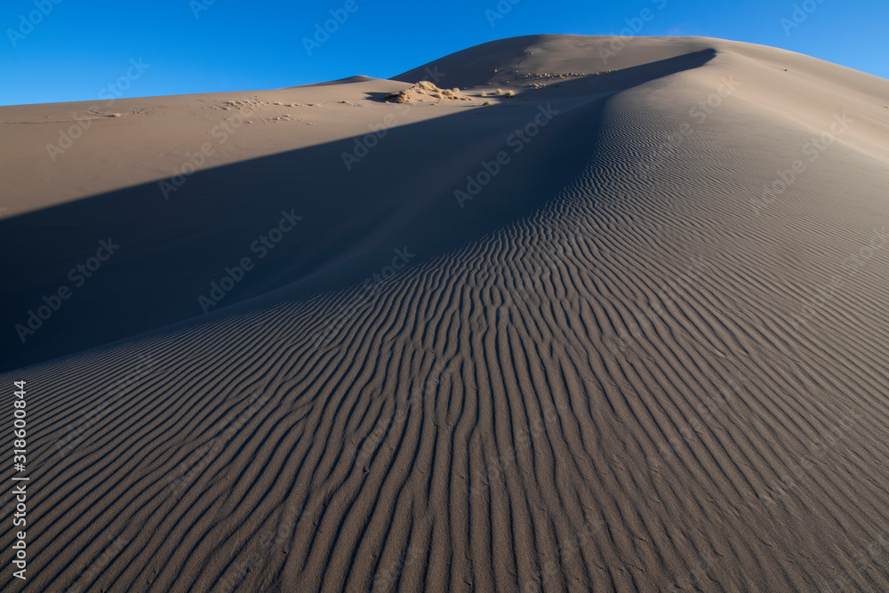 Drift sand dunes in the Gobi desert
