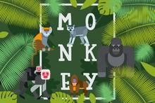 Monkey Typographic Poster, Vec...