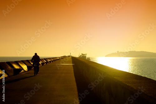 Carta da parati Rear View Of Silhouette Man Riding Bicycle On Pier