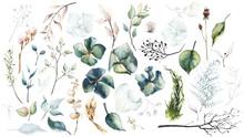 Watercolor Painted Floral Set ...