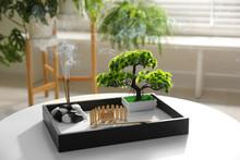 Beautiful Miniature Zen Garden...
