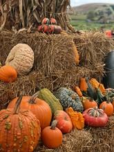 Close-Up Of Pumpkins And Hay O...