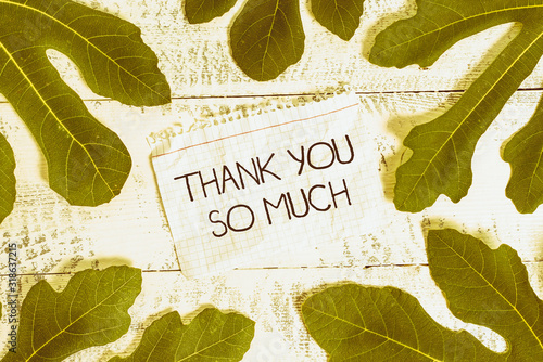 Writing note showing Thank You So Much Wallpaper Mural