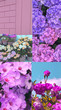 canvas print picture - Fashion aesthetic moodboard. Trendy Spring flowers bloom