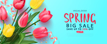 Spring Big Sale Card With Tuli...