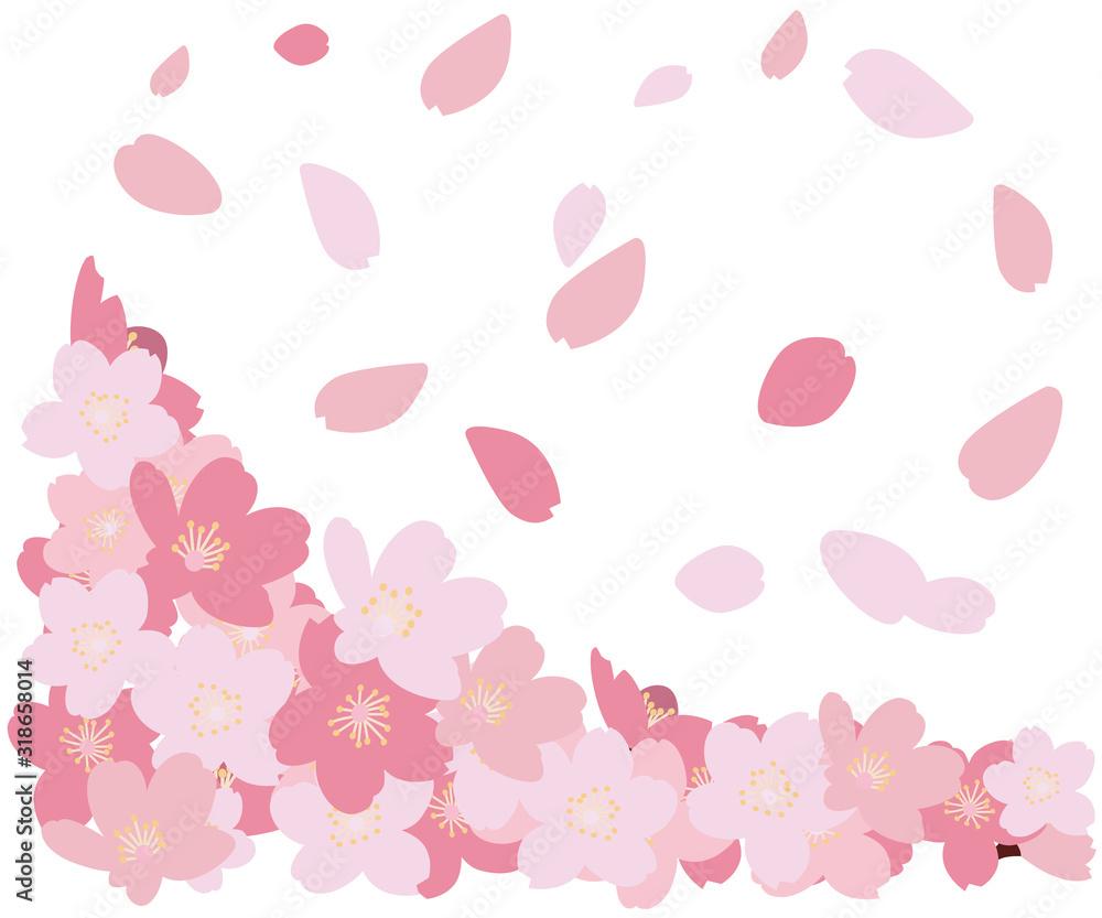 Fototapeta ラスト素材 桜 さくら サクラ 花吹雪 花びら ベクター