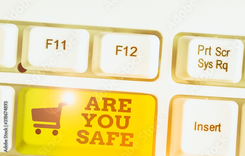 Text sign showing Are You Safe Canvas Print