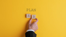 Businessman Choosing Plan B
