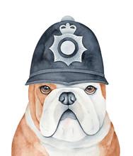English Bulldog Character Wear...
